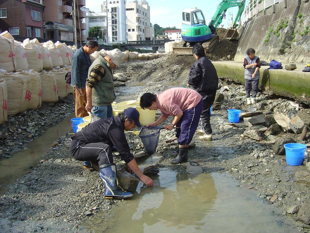 第2回・工事現場の生物救出作戦